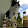 アイリッシュ・ウイスキーの発展を促すための税制改革の提案