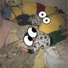 子供たち寝る時間問題☆萎える土曜日