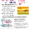 第11回「ひき桜」in横浜&第3回ピアサポートゼミナールのご案内