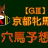 【GⅢ】京都牝馬S 結果