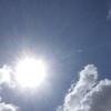 真夏の太陽に………