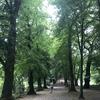 【ロンドン、ハムステッド・ヒース】都会の中の大自然で過ごしたミーハーな1日