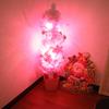 メリークリスマス☆四つ葉は一日早いクリスマスでした☆喜んでくれた女子力アップのプレゼントは!?
