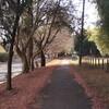 今日もろまんちっく村コースを走ってきました
