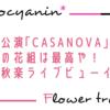 【花組】平成の花組は最高!「CASANOVA」大千秋楽ライブビューイングざっくり感想