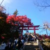 【高尾山】1号路下り~観光客から登山客まで歩ける舗装路~