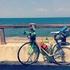 【初めての自転車旅行】ルート決定編