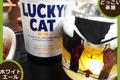 【 黄桜 クラフトビール】和あかね ラッキードッグ ラッキーキャット