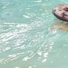 もうプールやめたい!からの復活。