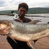 アフリカのコンゴまで牙のある怪魚ムベンガを釣り行った若者の話を聞いてヒーっとなった