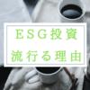 ESG投資が流行る理由はお金の価値が下がっているから?ESG投資は大金持ちの道楽なので庶民には無縁