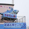 枕崎お魚センターのカツオがむっちゃ美味かった