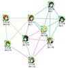 ネットワークのコミュニティ