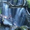 祈りとトランス in Bali