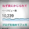 ブログを始めて7ヶ月【月間10000PV達成!】
