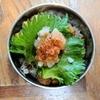 【1食95円】和風おろしチキンカツ丼弁当の作り方