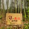 タケノコ(淡竹)採取