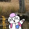 砥峰高原へススキを見に行った
