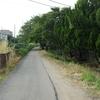 勝俣部長の「ため息」3360回・・・・人間の定義