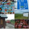 北海道三大市場、大盛『かって丼』と「オンネトーの女神」🗽