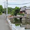 真夏の水郷(2017-08-03)(3)