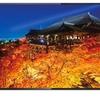 ノジマからHDR対応の49/55型液晶テレビが、ハイセンスからは55型フルHD液晶テレビが発売!