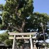 「村上社のクスノキ」〜「桜田八幡社」(名古屋市南区)