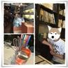 松本散策♪(中心部のカフェ2軒、雑貨、その他)(2015GWその2)