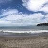 東京からの脱出を考え始めたきっかけは逗子海岸