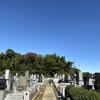天気が良いので墓誌に刻まれた父の名をリペイントしてきた。