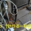 2018/12/09 猫ハナ(はな)写真 KIMG0252