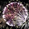 豪シドニーがレインボー花火で2018年を迎える