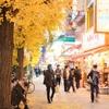 東京の街へ3日目:全てのビルが同じですね