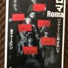 『ロマ ジプシーと呼ばないで』金子マーティン