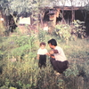 イランの小さな庭