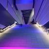 20201226、27 私立恵比寿中学 バンドのみんなと大学芸会2020「エビ中とニューガムラッド」(DAY1・DAY2)東京ガーデンシアター