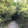 お寺参拝も池も桜も温泉も。楽しみ沢山の極楽寺山