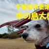 ❝日本一高い歩道橋=中の島大橋❞ 千葉県木更津市   愛犬とおでかけ-千葉県観光🎵 2021年2月23日⑤