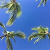 【世界の絶景!夫婦で巡る旅ブログ】 地球のパワーを感じるビッグアイランド!『ハワイ島』の旅❶