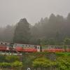 「阿里山(ありさん Alishan)駅」~「阿里山森林鉄路」本来の終着駅なのですが。。。