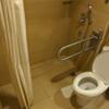 【白熊の豆知識】東南アジア・トイレに座ってシャワー?