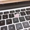 桜を愛でながらコードが書ける会社を目指して