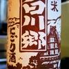 白川郷 純米 にごり酒 新酒