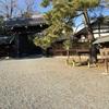 【京都御苑】に行ってきました!