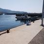 小島漁港はファミリーフィッシングに最高の場所と言い切る