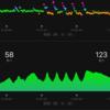 頑張った坂道ダッシュとやってみてしんどさが分かったタバタ式トレーニング。。
