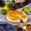 『味わいリッチなチーズケーキ』予約開始のお知らせ