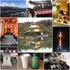 京都で初詣(伏見稲荷大社・晴明神社・金閣寺)