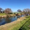 元荒川を歩く その1 中川合流点から遡って北越谷・出津橋