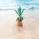海外女子旅部|3泊5日のハワイコーデ!!おすすめ着まわしファッションを紹介します